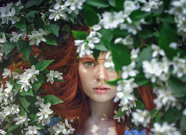Hortensja: kiedy kwitnie, jak podlewać, nawozić i przycinać?