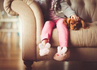 Szczęśliwy pies w domu
